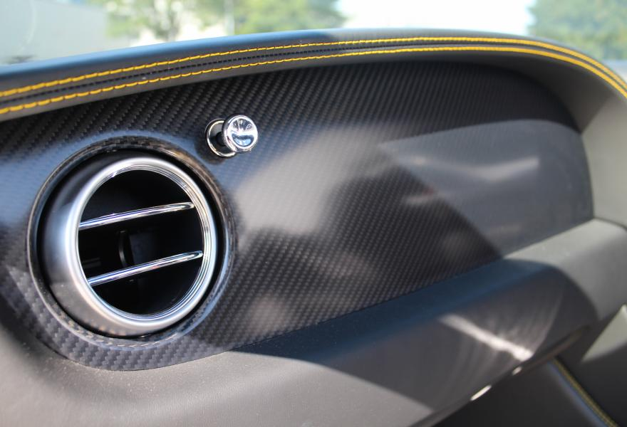 carbon fibre trim