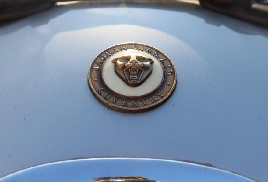 jaguar badge on a classic xk 120 roadster for sale at DD classics