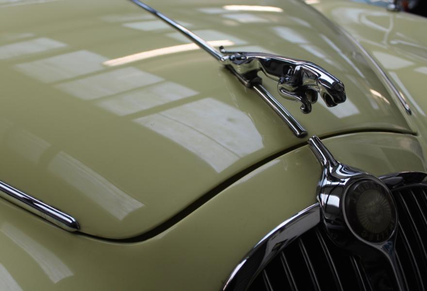 Jaguar Statue on a 1966 Jaguar MK II